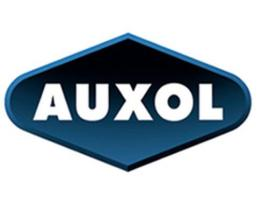 Auxol 00620 - LIMPIA INYECTORES GASOLINA 450 ML.